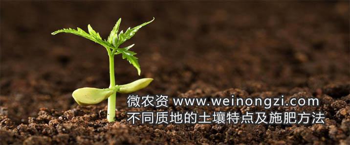 不同质地的土壤特点及施肥方法